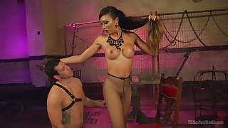 Asian shemale gets laid with her male slave the hard way